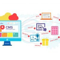 Custom-Website-development