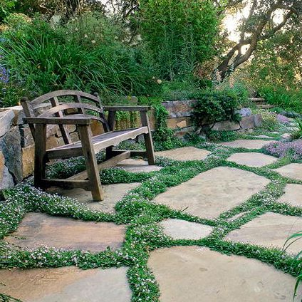 5 TIPS FOR INCREDIBLE FRONT YARD LANDSCAPING IDEAS